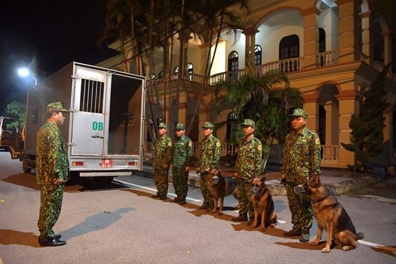 Chó nghiệp vụ sẵn sàng tham gia tìm kiếm, cứu nạn tại Thủy điện Rào Trăng 3