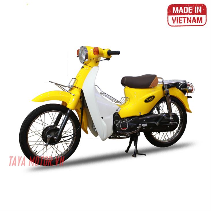 Taya Motor Việt Nam - chuyên gia xe máy 50cc