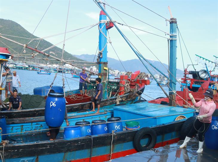 Tàu cá hợp sứctác chiến trên biển (bài 2)