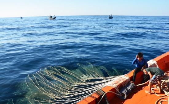 Khẩu lệnh bám biển