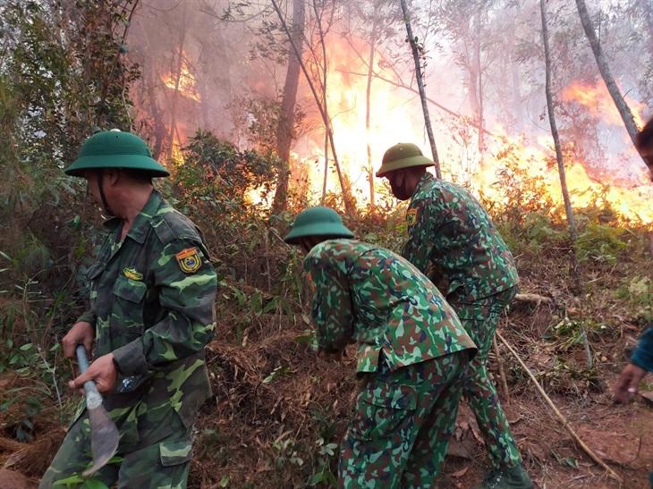Hơn 500 cán bộ, chiến sĩ và nhân dân nỗ lực dập lửa cứu rừng