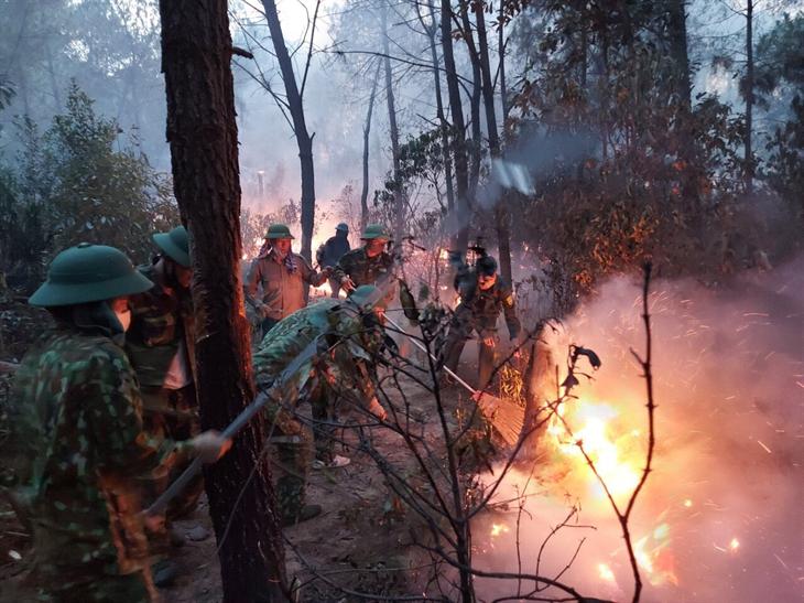 Các lực lượng tiếp tục căng mình cứu rừng ở Nghệ An