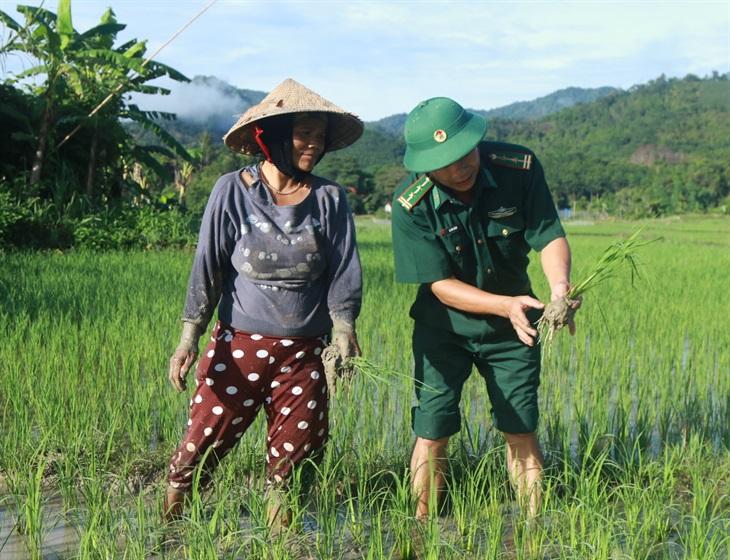 Các mô hình kinh tế của BĐBP Quảng Nam giúp dân xóa đói, giảm nghèo