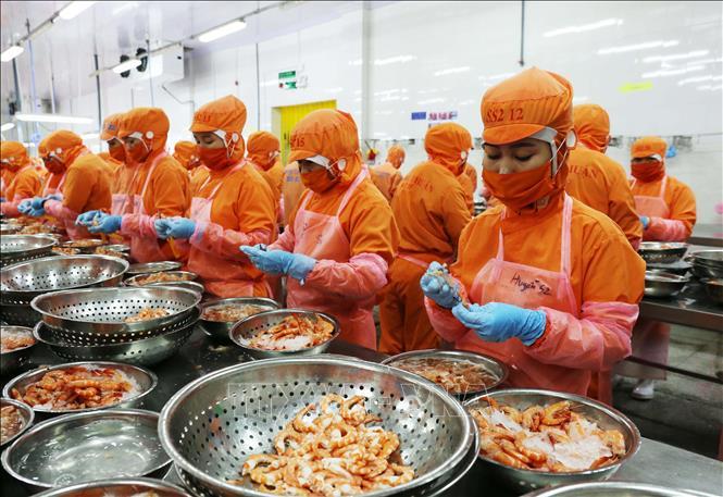 WB dự báo Việt Nam có tốc độ tăng trưởng kinh tế lớn thứ 5 thế giới năm 2020