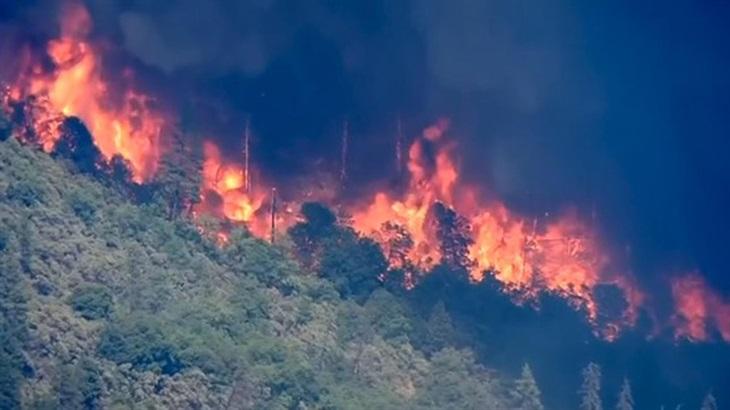 Lỗ hổng trong phòng,chống cháy rừng