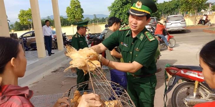 Thí điểm Mô hình Đàn gà sinh kế cho hộ nghèo vùng biên
