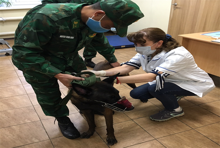 Đội tuyển chó nghiệp vụ dự Army Games - 2020 đã đến Liên bang Nga an toàn