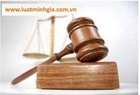 Công ty Luật Minh Gia - Dịch vụ luật sư tranh tụng uy tín, bảo vệ tối đa quyền lợi của khách hàng