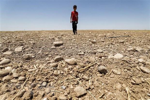 Lancet: Không ai có thể an toàn trước tác động của biến đổi khí hậu
