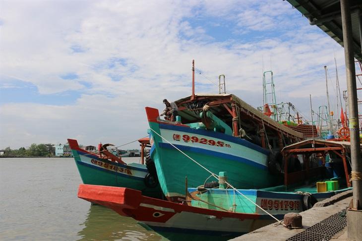 Triển khai đồng bộ các giải pháp phòng, chống khai thác thủy sản bất hợp pháp