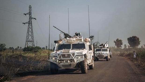 Kêu gọi các bên tại Cộng hòa Trung Phi giải quyết bằng biện pháp hòa bình