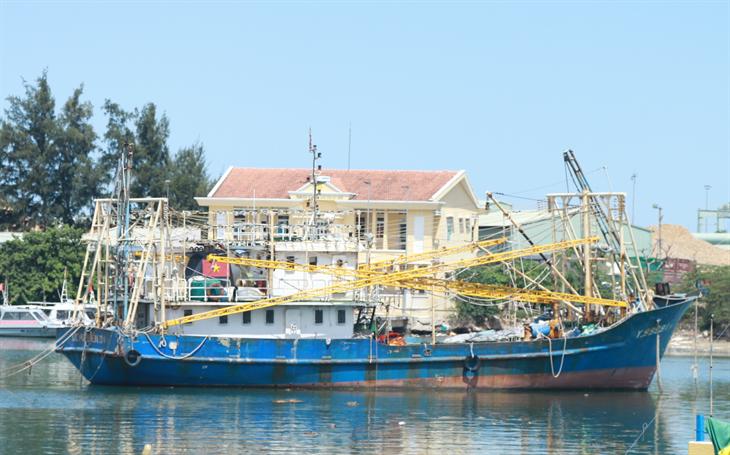 Báo động đỏ nghề khai thác thủy sản? (bài 2)
