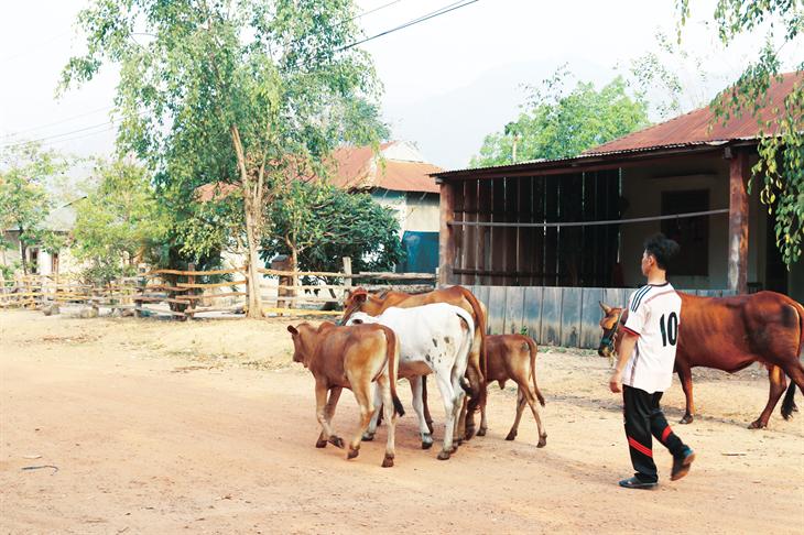 Giảm nghèo bền vững tạo động lực xây dựng nông thôn mới