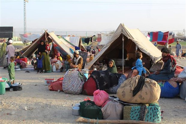 Hội đồng Bảo an thông qua hai nghị quyết về Afghanistan và Iraq