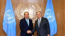 Việt Nam - Đối tác mạnh mẽ của Liên hợp quốc vì hòa bình và phát triển bền vững