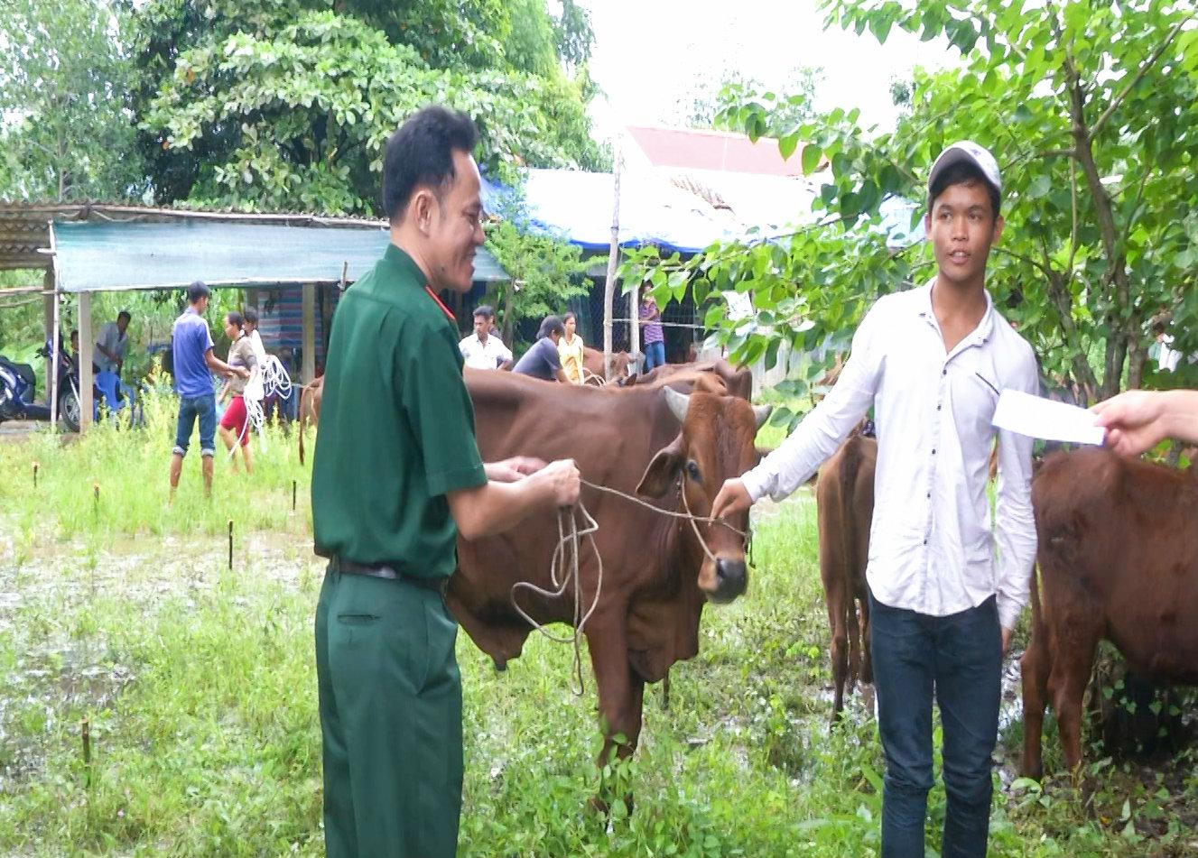 Sóc Trăng: Bàn giao 20 con bò sinh sản cho các hộ nghèo biên giới