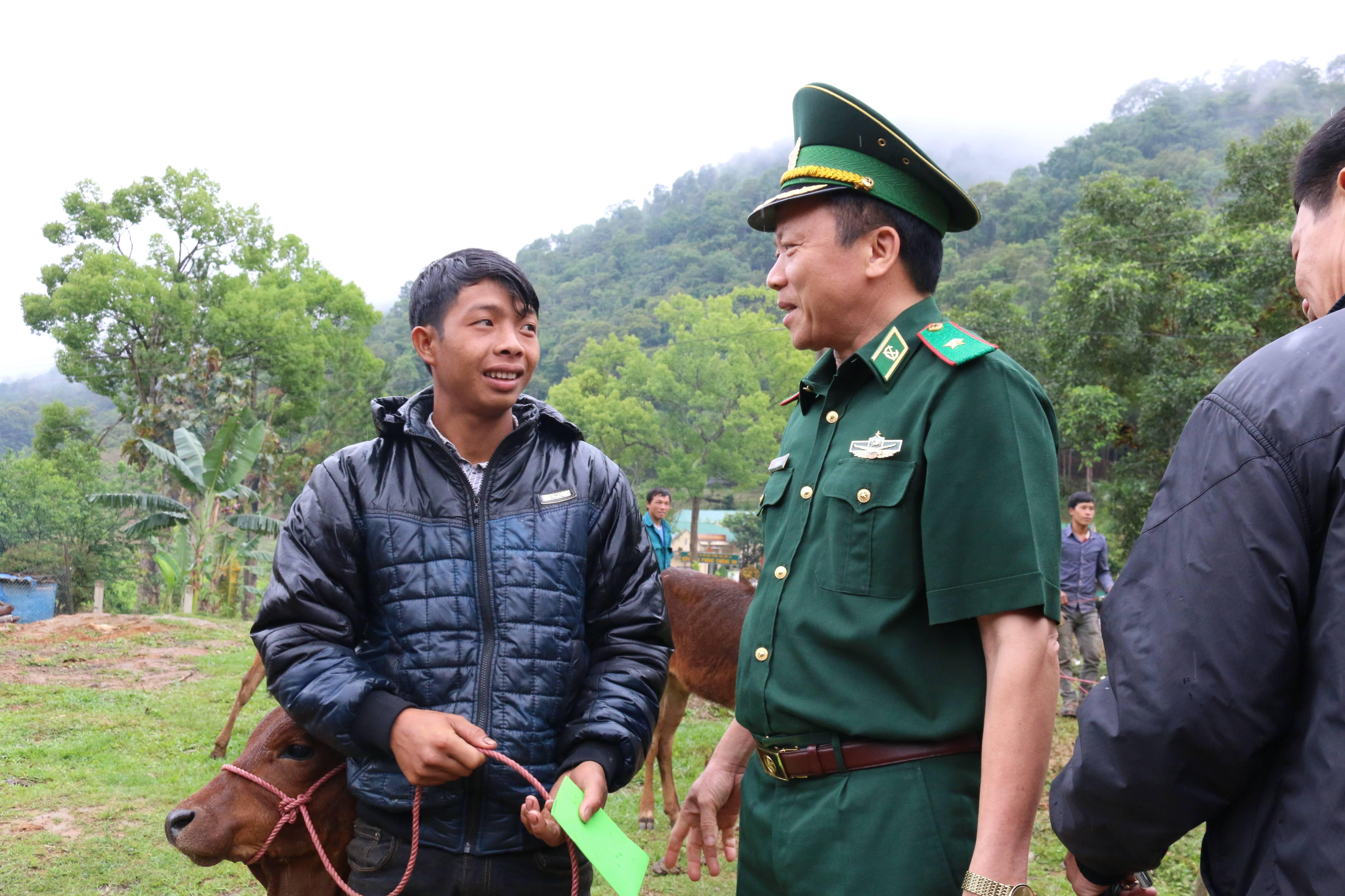 Tặng 50 con bò giống cho đồng bào nghèo Sơn La