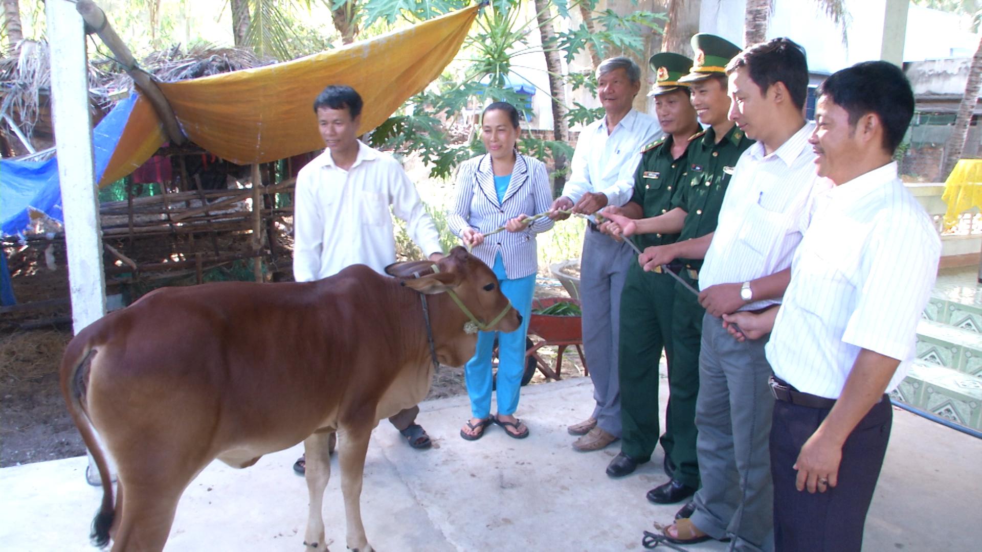 Đồn BP Xuân Thịnh tặng bò giống cho hộ nghèo
